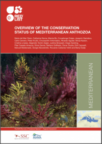 IUCN publication - Overview of the conservation status of Mediterranean anthozoa